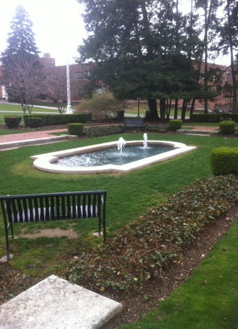 UCLC Pond Cleaning