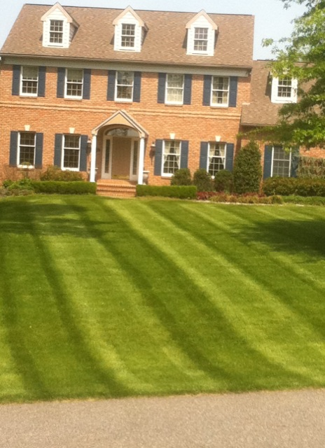 UCLC Lawn Care